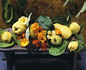 Quinces, marigolds, elderberries, nasturtiums