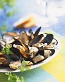 Mussels with garlic cream sauce