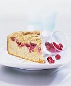 Ein Stück Cranberrykuchen