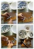 Preparing sardines