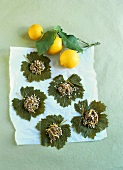 Vine leaves with mince and rice stuffing, lemons