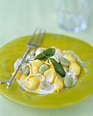 Orecchiette in Fontina sauce with sage and beans