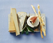 Still life with cheese, fig and grissini