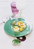 Eggs in herb béchamel sauce