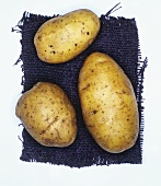 Potatoes, variety: Linda