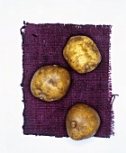 Potatoes, variety: La Bonnotte