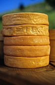 A stack of Munster cheese