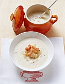 Hamburg parsley soup with Bavarian crayfish