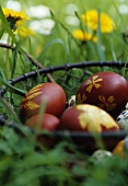 Easter eggs in a wire basket on the grass