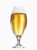 Ein Glas Helles mit Schaumkrone