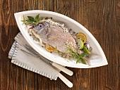 Gilt-head bream with sea salt and herbs