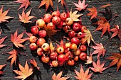 A wreath of crab apples and maple leaves
