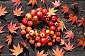 Kranz aus Zieräpfeln mit Ahornblättern