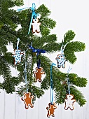 Pine sprig hung with gingerbread men