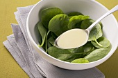 Vinegar and oil marindade with spinach