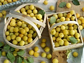 Fresh mirabelles in baskets