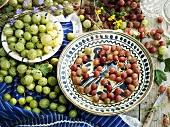 An arrangement of red and green gooseberries
