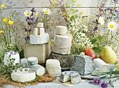 An arrangement of various types of goats' cheese