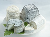 Various types of goats' cheese