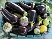 A basket filled with various aubergines