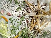An arrangement of dried beans