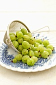 Fresh gooseberries in a sieve on plate