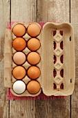 Fresh eggs in an egg box