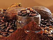 Still life with cocoa powder, cocoa beans, cocoa fruits