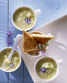 Cream of cucumber soup from Saxony