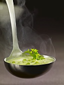 Ladle full of pea soup