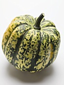 A squash (green and yellow speckled)