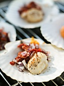 Scallops with tomatoes and onions in scallop shells