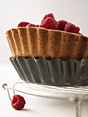Raspberry tart in the baking tin