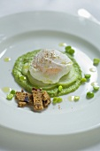 Poached egg with peppermint oil on pea puree