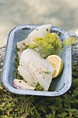 Fresh fish fillets with herbs and lemon in a dish