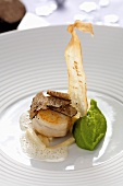 Scallop with black truffle and Hamburg parsley root