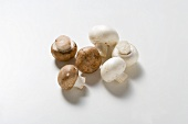 White button mushrooms and chestnut mushrooms