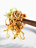 Fried egg noodles with vegetables on chopsticks