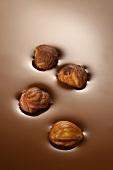 Hazelnuts in chocolate sauce