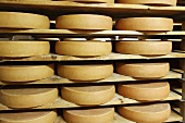 Bergkäse cheese (Alpine cheese) stored on wooden shelves
