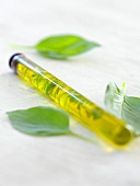 Basil oil in a test tube