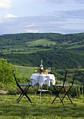 Laid table with wine in a hilly landscape