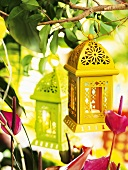 Coloured lanterns (garden decorations)