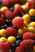 Raspberries, blueberries & Cape gooseberries (full-frame)