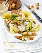 Caesars Sommersalat mit gegrillter Hähnchenbrust