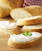 Soft cheese on slices of ciabatta