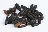 Tonkabohnen (afrikanisches Gewürz)