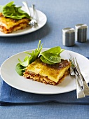 Vegetable lasagne with fresh spinach