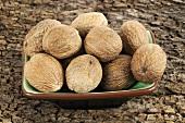 Nutmegs in rectangular dish