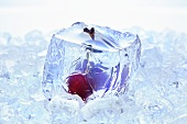 Cherry in a block of ice